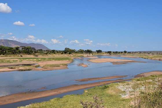 Ruaha National Park m