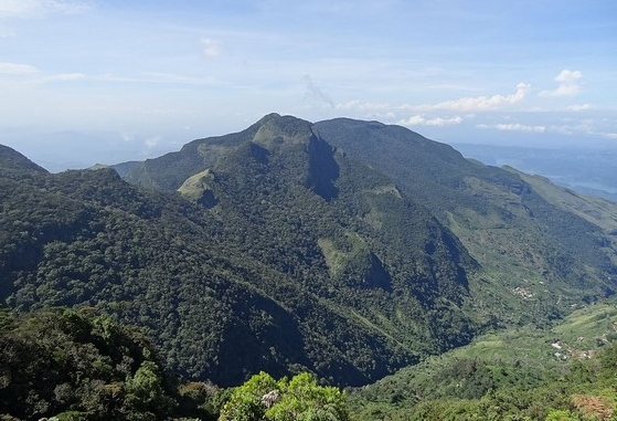 Horton Plains NP or