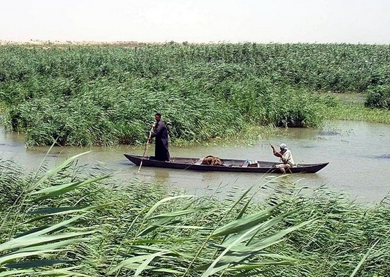 Mesopotamian Marshes  2v